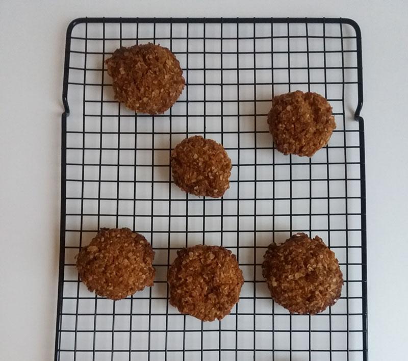 Havermoutkoekjes met kokos (vegan!)