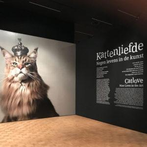 Kattenliefde tentoonstelling in de Kunsthal Rotterdam