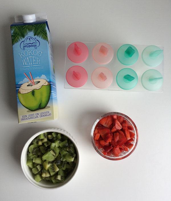 Kokos fruit ijsjes