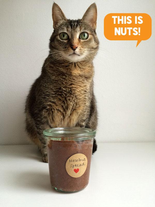 Bonbon poseert bij de hazelnotenspread. Nut hell ya!